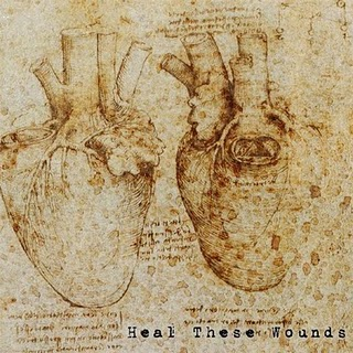 Анатомическое сердце картинки 8