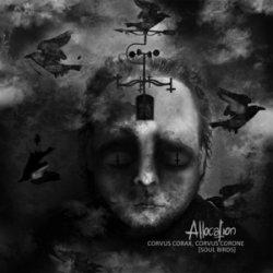 画像1: ALLOCATION - Soul Birds [10inch LP]