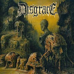 画像1: DISGRACE - True Enemy [LP]