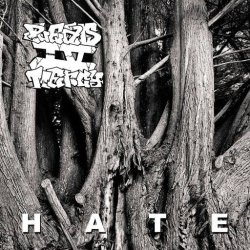 画像1: PLEAD 4 MERCY - Hate [CD]