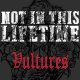 NOT IN THIS LIFETIME  - Vultures [CD]
