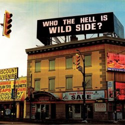 画像2: WILD SIDE - Who The Hell Is Wild Side [LP+Tシャツ]