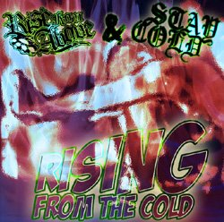 画像1: STAY COLD / RISE FROM ABOVE - Rising From The Cold Split
