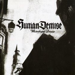 画像1: HUMAN DEMISE - Whitechapel Demise